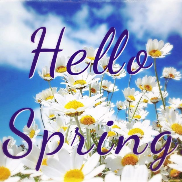 Doesnt look or feel like it but spring has sprunghellip