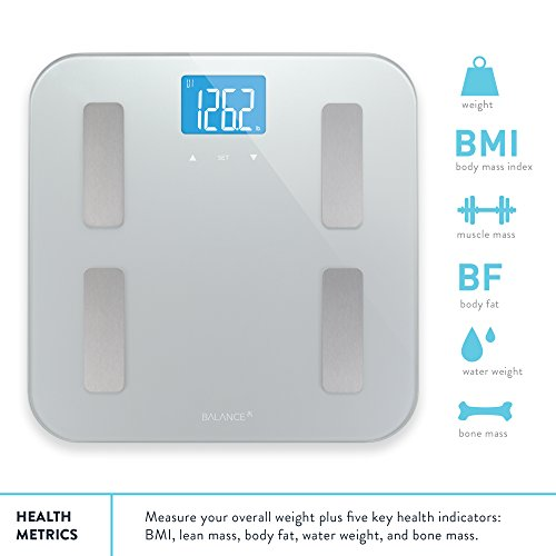 Image of body composition scale